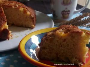 Gâteau aux mirabelles de Loloche
