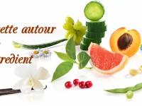 recette-autour-dun-ingredient